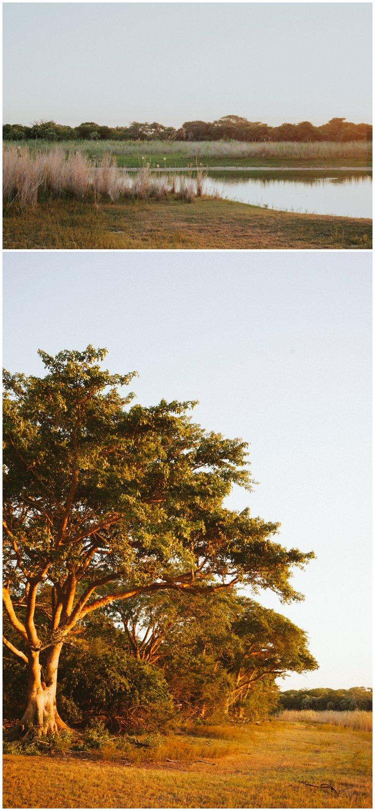 Bonamanzi, {Love} Unscripted   Rex & Sine, Bonamanzi Game Reserve, Casey Pratt Photography