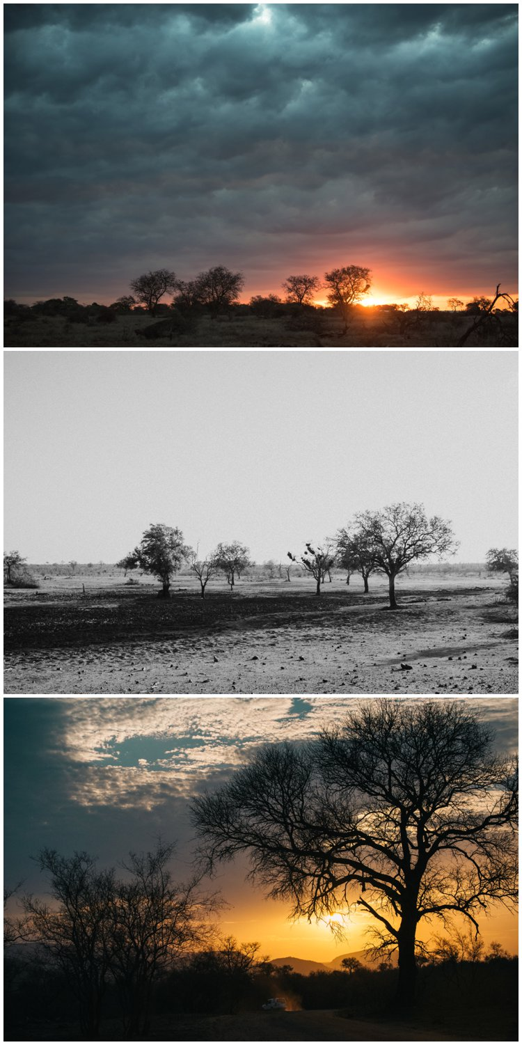 , {Life} Unscripted} | Kruger National Park, Best Place on Earth, Casey Pratt Photography