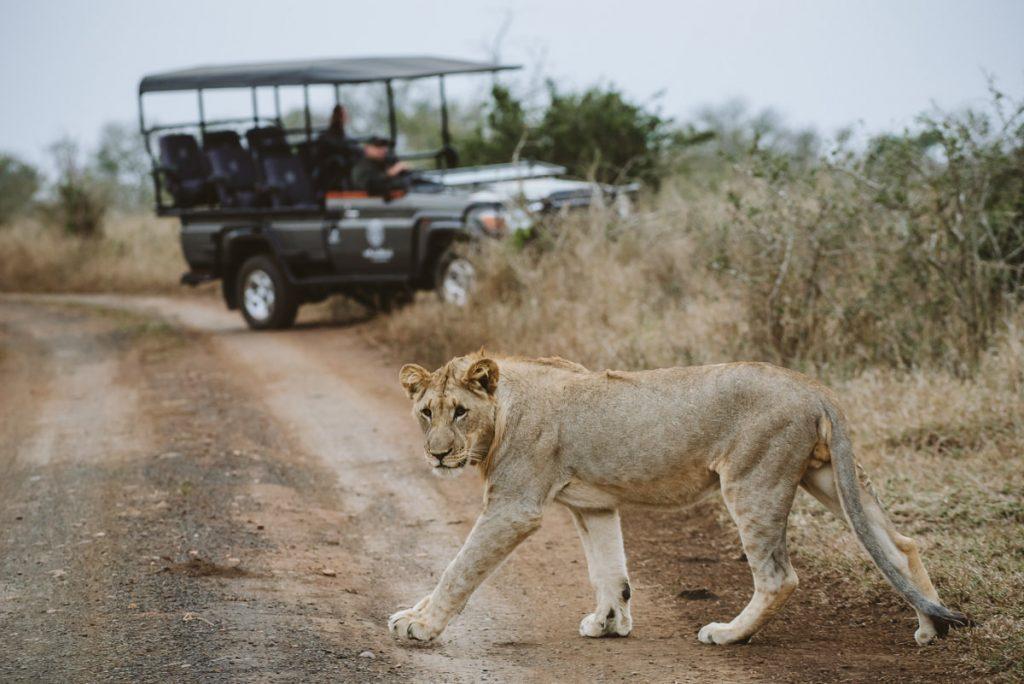Photographer of people, wildlife, and wild places, Durban based photographer, Casey Pratt Photography